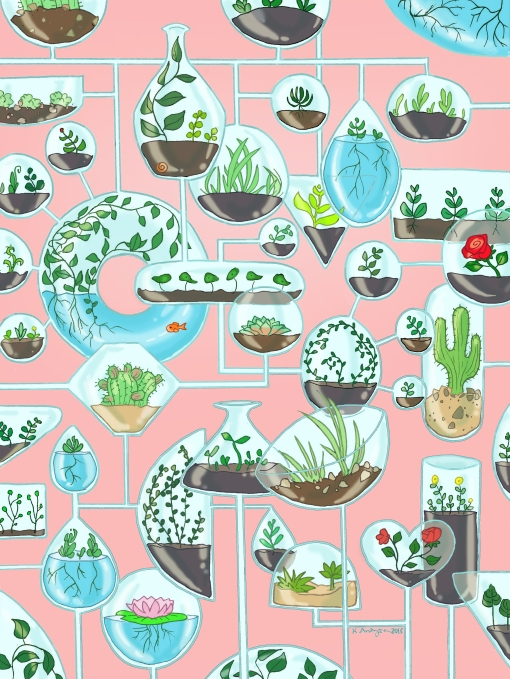 Terrariums in Pink